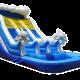 20' 2 lane dolphin wet-dry